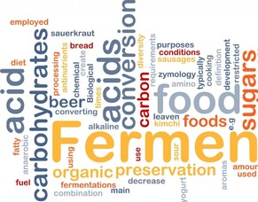 Why are fermented foods so good for us?